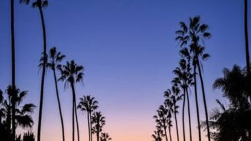San Diego California by Abduzeedo California Feelings
